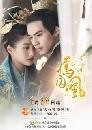 หนังจีน Untouchable Lovers องค์หญิงสวมรอย 8 DVD พากย์ไทย