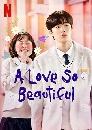 ซีรีย์เกาหลี A Love So Beautiful นับแต่นั้น ฉันรักเธอ (2020) 4 DVD บรรยายไทย